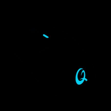 Souris Qpad DX-900 Pro Gaming Wireless Optique 16000dpi RGB SOQPDX-900 - 2